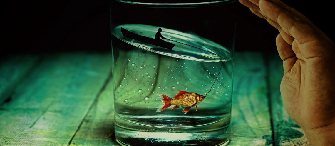 water-glass-2542790_1920